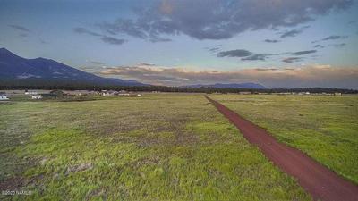 6980 W DREAMVIEW TRAIL, Flagstaff, AZ 86001 - Photo 1