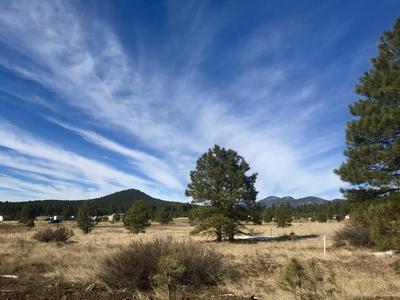 117 S ANSLEY LN, Parks, AZ 86018 - Photo 2