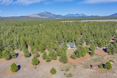 10108 N MIKAYLAH WAY, Parks, AZ 86018 - Photo 2