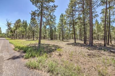 22846 FOX RANCH ROAD # 2, Munds Park, AZ 86017 - Photo 2