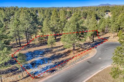 2931 S SOLITAIRES CANYON DR, Flagstaff, AZ 86005 - Photo 2