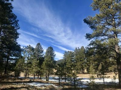 117 S ANSLEY LN, Parks, AZ 86018 - Photo 1