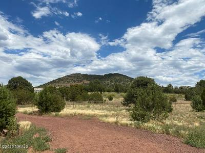 6588 N PINON HARVEST BLVD, Williams, AZ 86046 - Photo 2