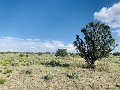 5150 N WOODLAND VIEW RD, Williams, AZ 86046 - Photo 1