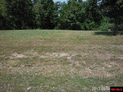OAK RIDGE DRIVE, Gepp, AR 72538 - Photo 1