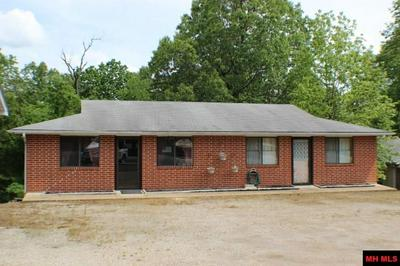 4400 HIGHWAY 178 W, Lakeview, AR 72642 - Photo 2