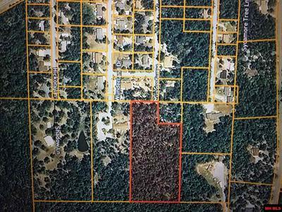 MARIGOLD LANE, Lakeview, AR 72642 - Photo 1