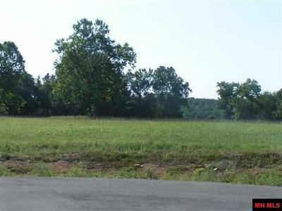 10 LYNN TER, Gassville, AR 72635 - Photo 2