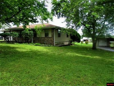537 CORA DR, Gassville, AR 72635 - Photo 1