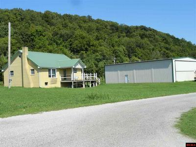 527 VALLEY AIRPORT PL, Cotter, AR 72626 - Photo 1