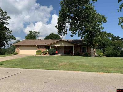 146 LAKEVIEW DR, LAKEVIEW, AR 72642 - Photo 1