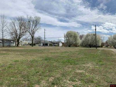 210 CORNELL ST, Gassville, AR 72635 - Photo 2