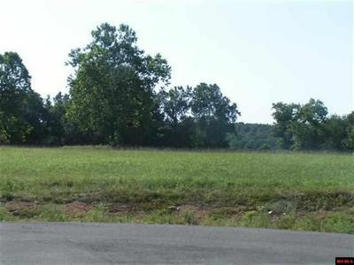 15 DEBONAIR CT, Gassville, AR 72635 - Photo 1