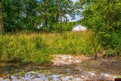 1384 COUNTY ROAD 109, Gainesville, MO 65655 - Photo 2