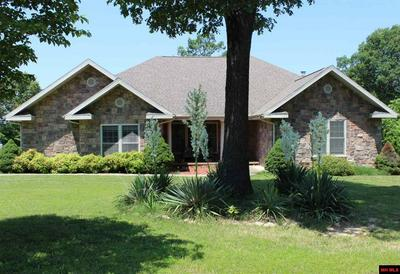 401 WOODS POINT RD, Elizabeth, AR 72531 - Photo 1