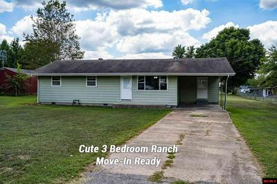 213 W HOUSER AVE, Gassville, AR 72635 - Photo 1