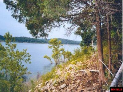 00 HICKORY FLATS LANE, LAKEVIEW, AR 72642 - Photo 2