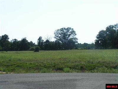 15 DEBONAIR CT, Gassville, AR 72635 - Photo 2
