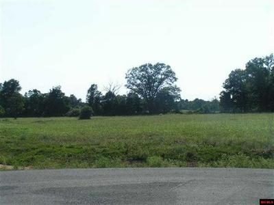 22 PARKMAN TER, Gassville, AR 72635 - Photo 1