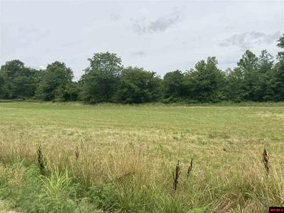 OFF DENTON FERRY ROAD, Cotter, AR 72626 - Photo 1