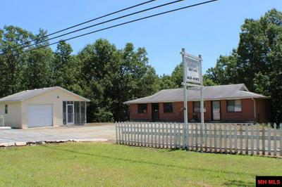 4400 HIGHWAY 178 W, Lakeview, AR 72642 - Photo 1