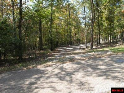 LOT 41 CR 276, Lakeview, AR 72642 - Photo 1