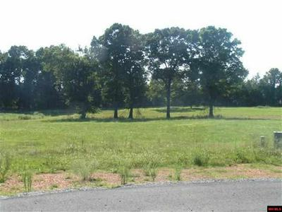 17 DEBONAIR CT, Gassville, AR 72635 - Photo 1