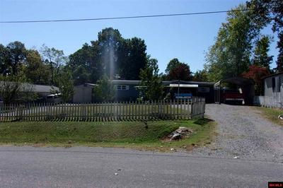 705 LYNETTE AVE, Bull Shoals, AR 72619 - Photo 2