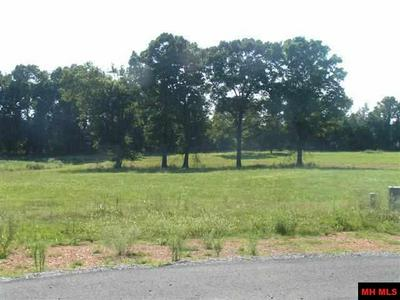 11 DEBONAIR CT, Gassville, AR 72635 - Photo 2