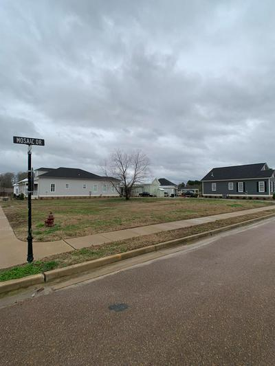 LOT 38 EASEL ST, TAYLOR, MS 38673 - Photo 2