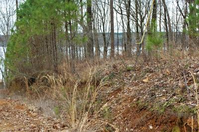 LOT 28 SPRING HOLLOW, Iuka, MS 38852 - Photo 1