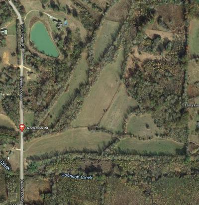 TBD HENDERSON, Batesville, MS 38606 - Photo 2