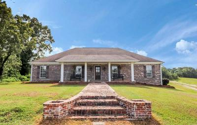 133 COUNTY ROAD 311, OXFORD, MS 38655 - Photo 1