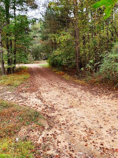 54 COUNTY ROAD 398, TAYLOR, MS 38673 - Photo 2