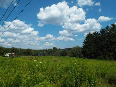 0 SWEDEN HILL ROAD, COUDERSPORT, PA 16915 - Photo 2