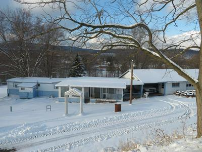 217 SOUTHSIDE RD, Canton, PA 17724 - Photo 1