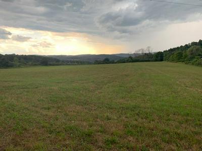 0 CHARLESTON RD., Wellsboro, PA 16901 - Photo 1