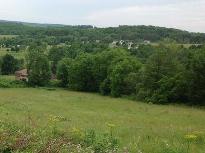 0 CHERRY FLATS, Wellsboro, PA 16901 - Photo 2