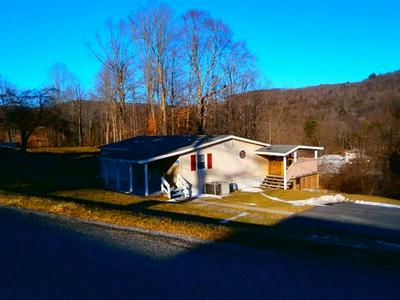 132 MAPLE HILL RD, BLOSSBURG, PA 16912 - Photo 1