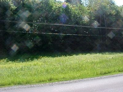 LOT 73 HILLS CREEK LAKE ROAD, Wellsboro, PA 16901 - Photo 2