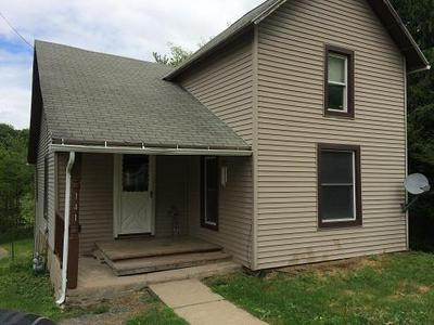 141 SULLIVAN ST, Mansfield, PA 16933 - Photo 2