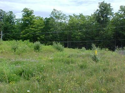 25 DORSETT HTS, Mansfield, PA 16933 - Photo 1