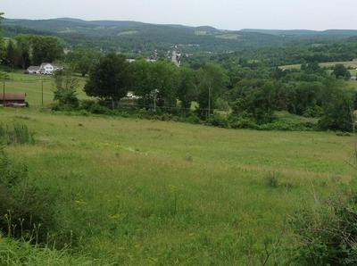 0 CHERRY FLATS, Wellsboro, PA 16901 - Photo 1