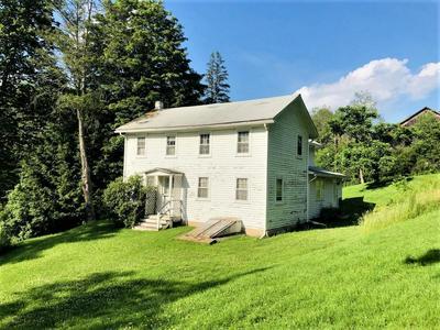 200 HURLEY HILL RD, Morris, PA 16938 - Photo 2