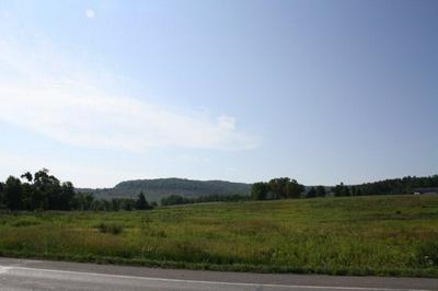 LOT 3 ROUTE 6 & RICE RD, Mansfield, PA 16933 - Photo 2