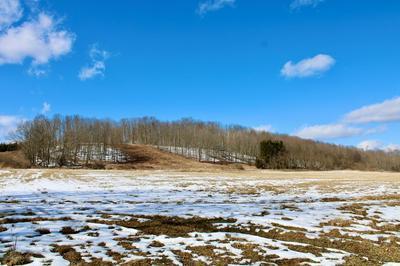 0 GOODWIN ROAD, Wellsboro, PA 16901 - Photo 2