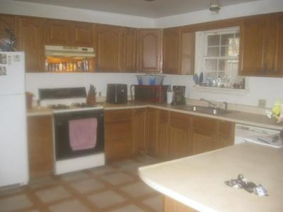 230 CONNELLY MOUNTAIN RD, Mainesburg, PA 16932 - Photo 2