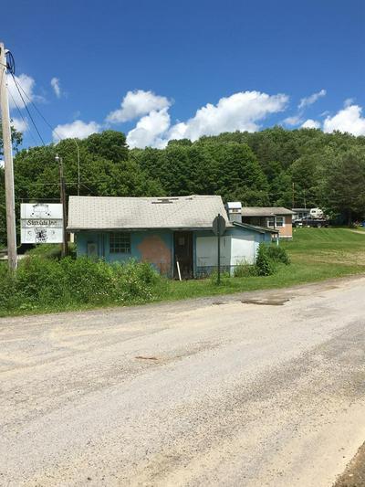 1418 BARK SHANTY RD, Austin, PA 16720 - Photo 1