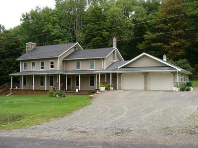 934 SWEDE HILL RD, Wellsboro, PA 16901 - Photo 1
