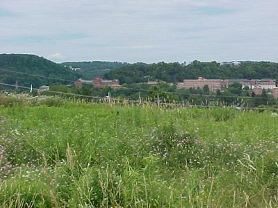 16 DORSETT HTS, Mansfield, PA 16933 - Photo 1